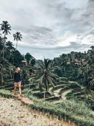 Indonesie Bali Ubud Rijstvelden Gijs
